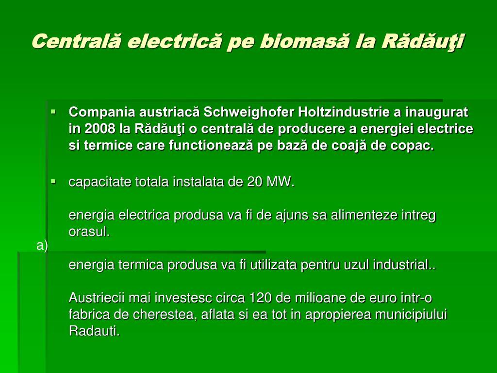 Centrală electrică pe biomasă la Rădăuţi