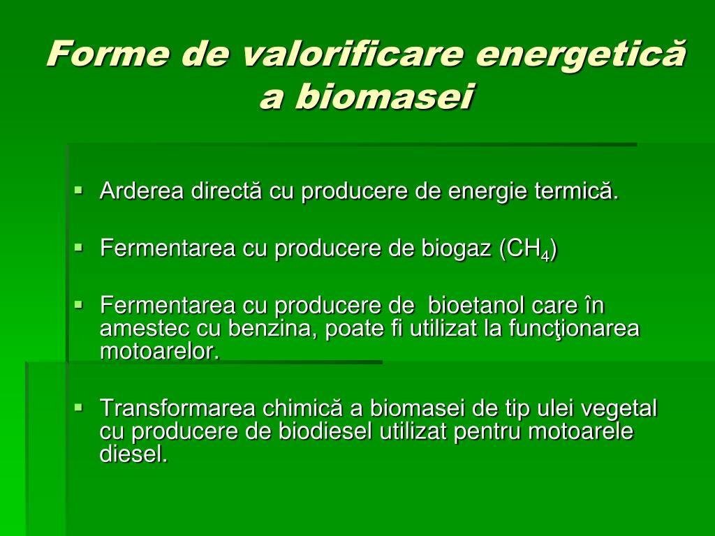 Forme de valorificare energetică a biomasei