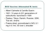 bcg vaccine attenuated m bovis