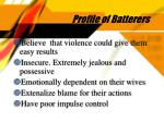 profile of batterers