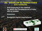 2b develop alternatives risk financing
