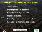 causes of performance gaps