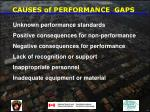 causes of performance gaps31