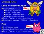 livestock lives