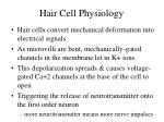 hair cell physiology