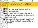 veldfires in south africa