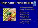 other factors youth in regions