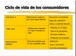 ciclo de vida de los consumidores10