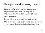unsupervised learning issues