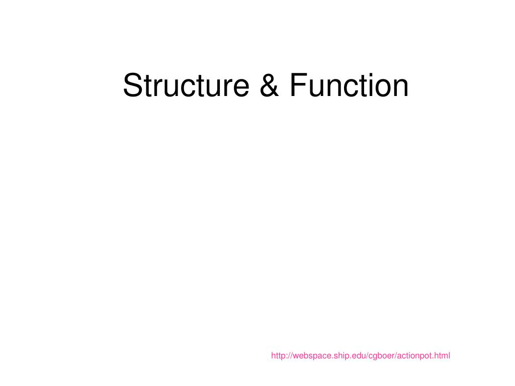 structure function l.