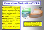 composizione n microbico cncps