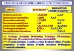 principali specie amilolitiche e pectinolitiche