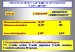 principali specie batteriche metanogene e lipolitiche