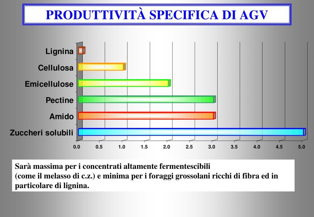 produttivit specifica di agv l.