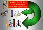 razione ricca di fibra e povera di amido tanti nsc e poca ndf