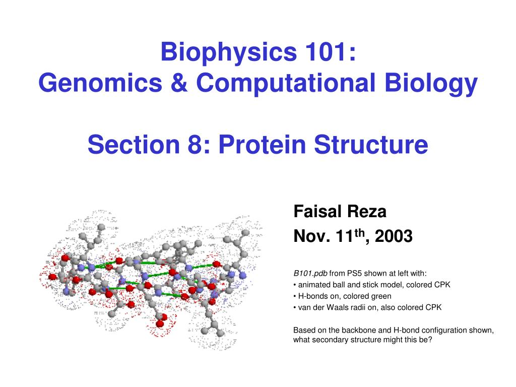 biophysics 101 genomics computational biology section 8 protein structure l.