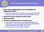 risk management initiatives