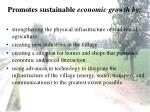 promotes sustainable economic growth by