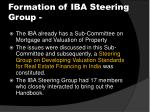 formation of iba steering group
