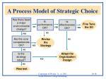 a process model of strategic choice