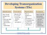 developing transorganization systems tss