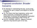 proposed constitution broader concerns5