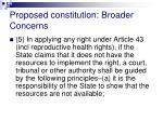 proposed constitution broader concerns6