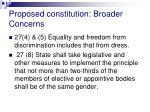 proposed constitution broader concerns7