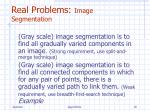 real problems image segmentation