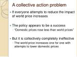 a collective action problem
