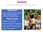 culture7