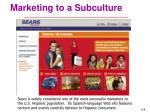 marketing to a subculture