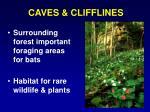 caves clifflines
