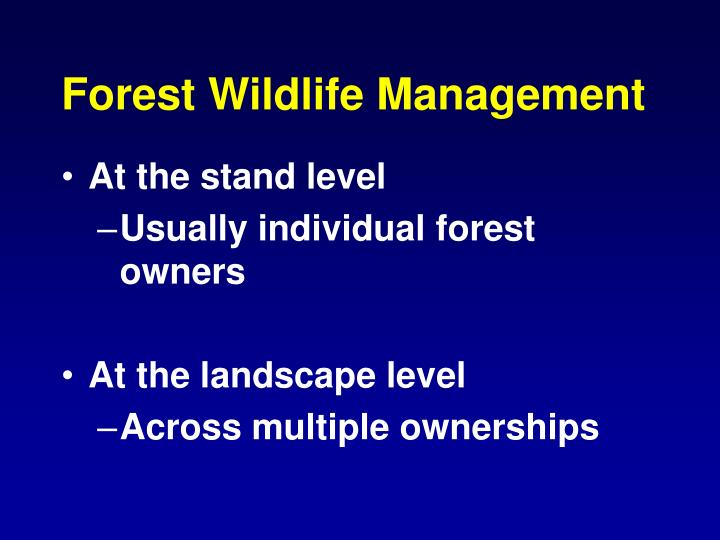 Forest Wildlife Management