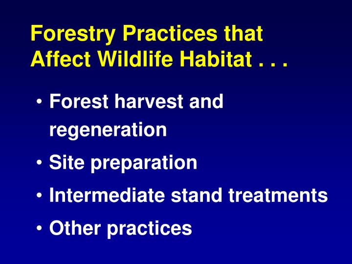 Forestry Practices that Affect Wildlife Habitat . . .