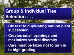 group individual tree selection