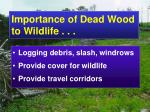 importance of dead wood to wildlife1