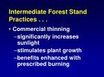 intermediate forest stand practices1