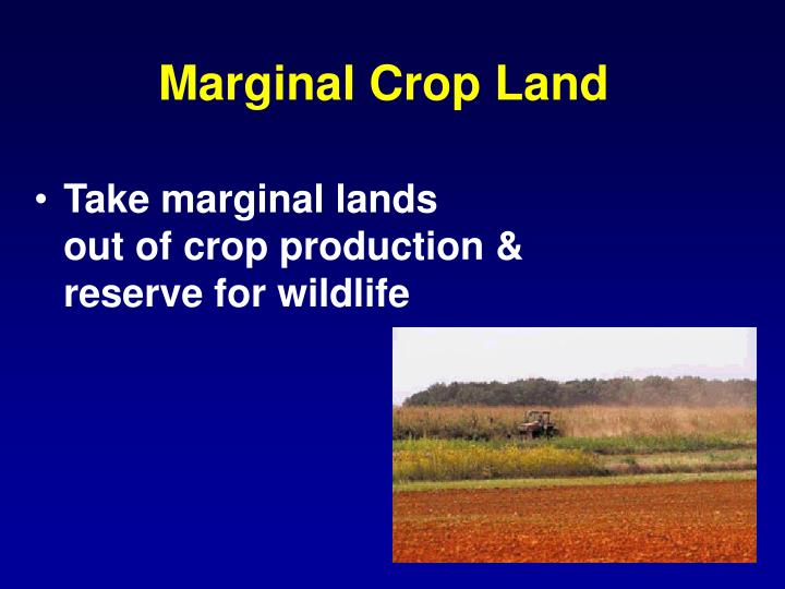 Marginal Crop Land