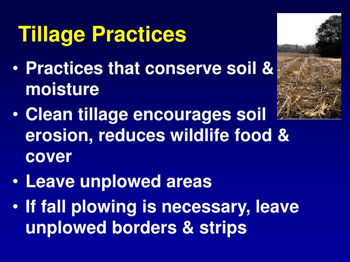 Tillage Practices