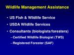 wildlife management assistance1