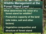 wildlife management at the forest stand level