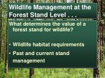 wildlife management at the forest stand level1