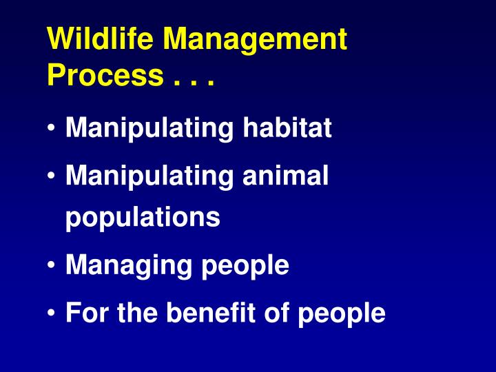 Wildlife Management Process . . .