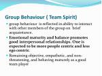 group behaviour team spirit