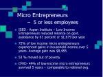 micro entrepreneurs 5 or less employees