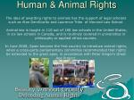 human animal rights14