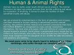 human animal rights23