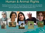 human animal rights24