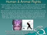 human animal rights5